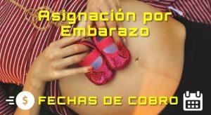 ANSES. Fechas de cobro para la Asignación por Embarazo