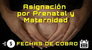 ANSES. Asignación por Prenatal y Maternidad