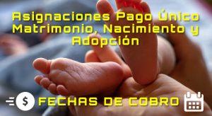 ANSES. Asignaciones Pago Único: Matrimonio, Nacimiento y Adopción